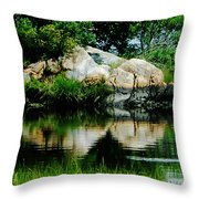 Pool In Marsh At Mystic Ct Throw Pillow