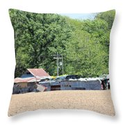 Poor Monkey's Lounge From Afar Throw Pillow