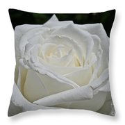 Pope's Rose Throw Pillow