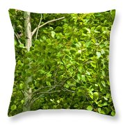 Poplar Tree And Leaves No.368 Throw Pillow