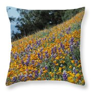Poppies And Lupine Flowers Blanket Throw Pillow