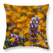 Poppies And Lupine Flowers In A Santa Throw Pillow