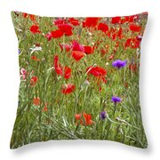 Poppies And Purple Flowers Throw Pillow