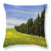 Poppies And Wild Flowers In Wheat Field Throw Pillow