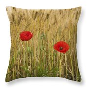 Poppies  In A Field Of Barley Throw Pillow