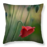 Poppies Mood Throw Pillow