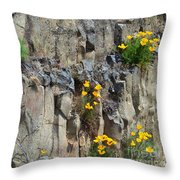 Poppies On The Cliff Throw Pillow