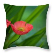 Poppies Vibrance Throw Pillow