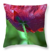 Poppy And Dewdrops Throw Pillow