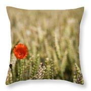 Poppy Flower In Field Of Wheat Throw Pillow