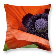 Poppy For Peace Throw Pillow
