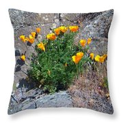 Poppy On The Rocks Throw Pillow