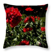 Poppy Pompom Throw Pillow