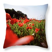 Poppy Stars Throw Pillow