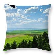 Porch View Of Wilsall Valey Throw Pillow