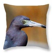 Portait Of A Little Blue Heron Throw Pillow