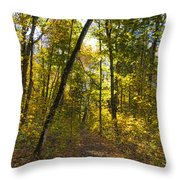 Portal Through The Woods Throw Pillow