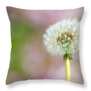 Portland, Oregon, United States Of Throw Pillow