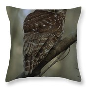 Portrait Of A Barred Owl Perched Throw Pillow