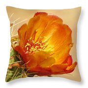 Portrait Of A Cactus Flower Throw Pillow