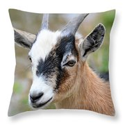 Portrait Of A Pygmy Throw Pillow