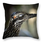 Portrait Of A Roadrunner  Throw Pillow