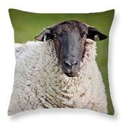 Portrait Of A Sheep Throw Pillow