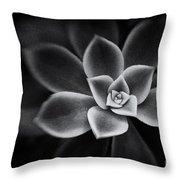 Portrait Of A Succulent Throw Pillow