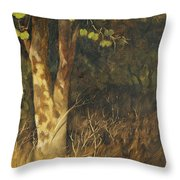 Portrait Of A Tree Trunk Throw Pillow