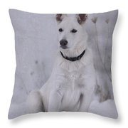 Portrait Of A Young Dog Throw Pillow
