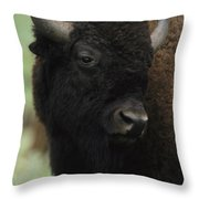 Portrait Of An American Bison Throw Pillow