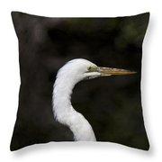 Portrait Of An Egret Throw Pillow