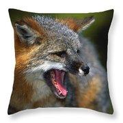Portrait Of Gray Fox Barking Throw Pillow