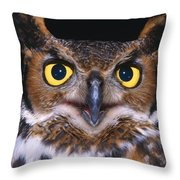 Portrait Of Great Horned Owl Throw Pillow