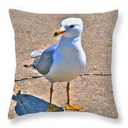 Posing Gull Throw Pillow