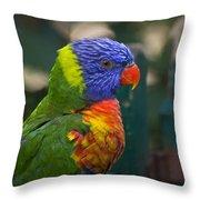 Posing Rainbow Lorikeet. Throw Pillow
