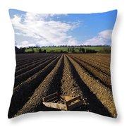 Potato Field, Ireland Throw Pillow