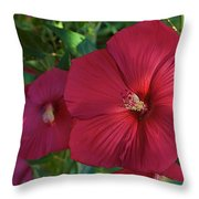 Potchen's Hibiscus Throw Pillow