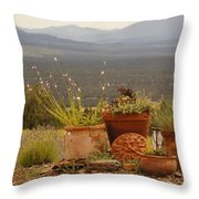 Pots And Vista Throw Pillow