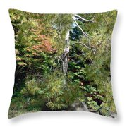 Potted Tree Throw Pillow