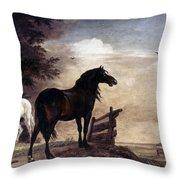 Potter: Horses, 1649 Throw Pillow
