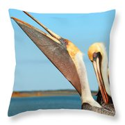 Pouch And Preen Throw Pillow