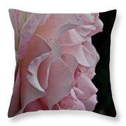 Powder Puff Pink Throw Pillow