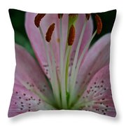 Powdery Pink Throw Pillow