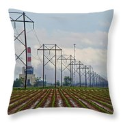 Power And Plants I  Throw Pillow