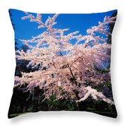 Powerscourt Gardens, Powerscourt Throw Pillow