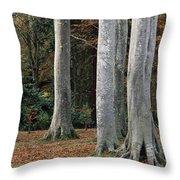 Powerscourt Woods,co Throw Pillow