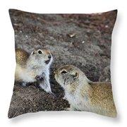 Prairie Conversation Throw Pillow