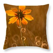 Prairie Coreopsis And Dewdrops Throw Pillow