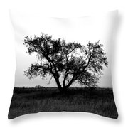 Prairie Dog Throw Pillow by Empty Wall